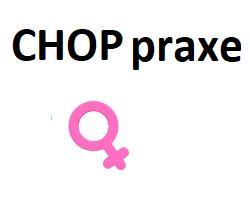 """CHOP v praxi k """"nezaplacení"""""""