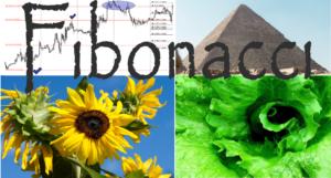 Fibonacci trading - Fibonacciho posloupnost na forexu