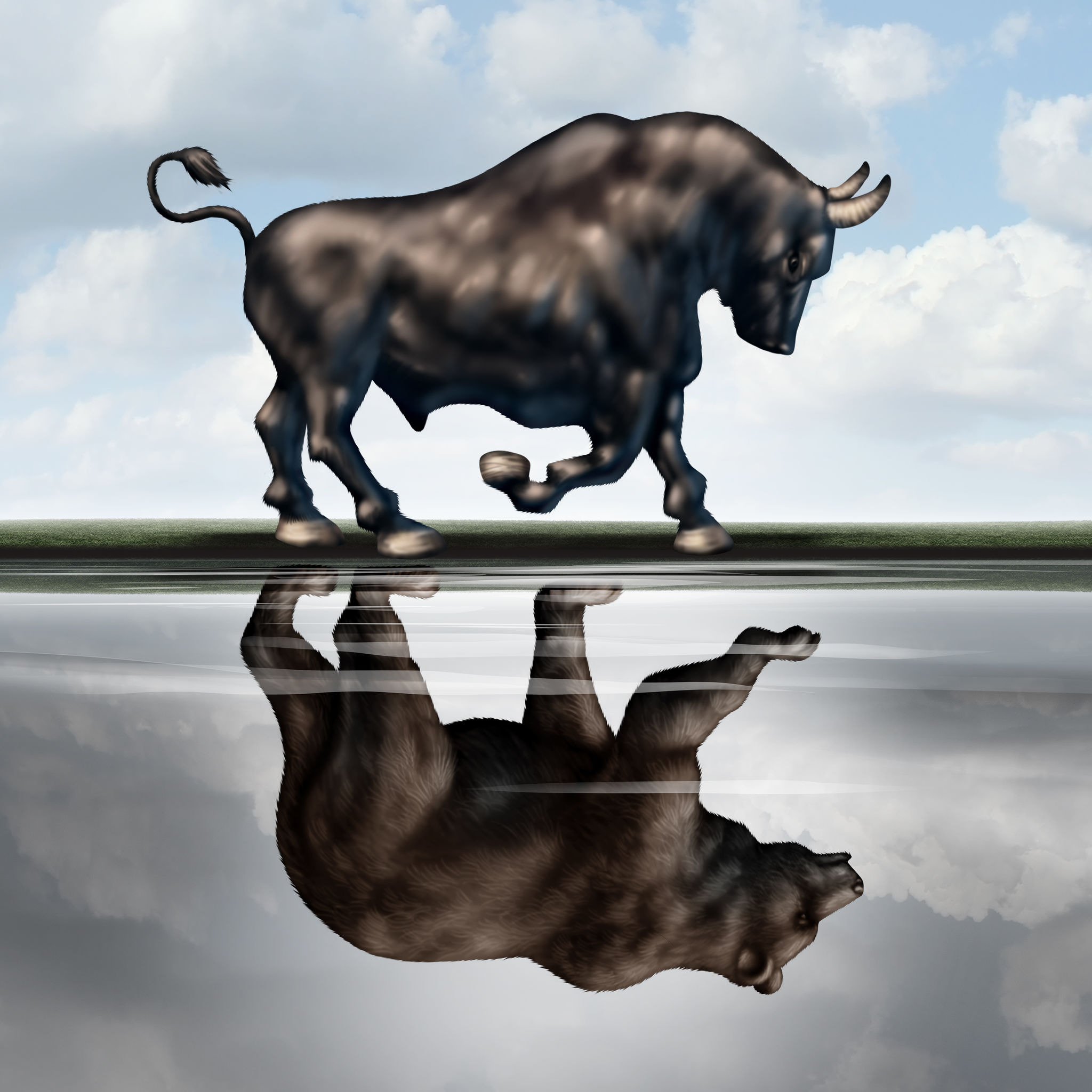Býk vs Medvěd, Bull vs Bear market