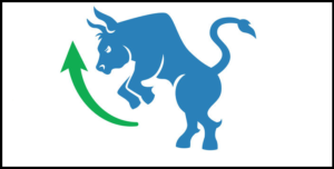 Býk, býčí trh