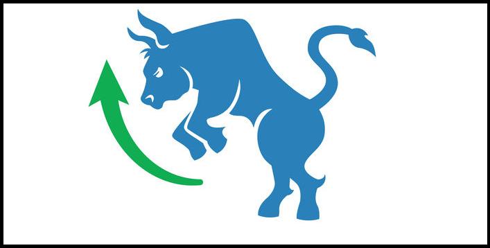 Býk, býčí trh, bull market , rostoucí trh