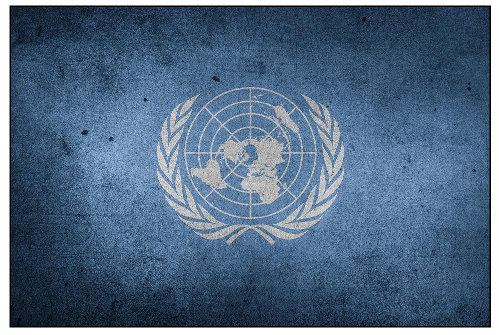 Organizace spojených národů = OSN
