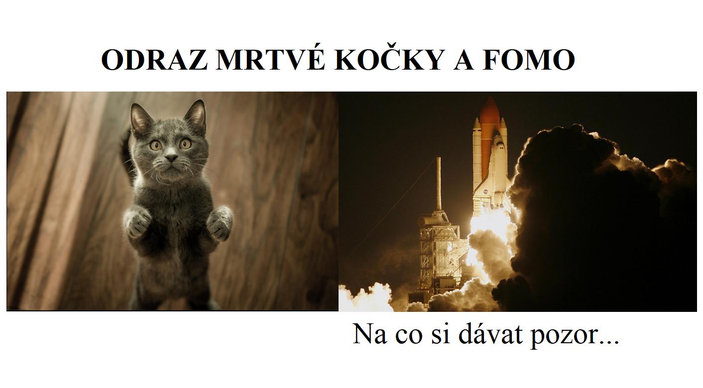 Odraz mrtvé kočky a FOMO