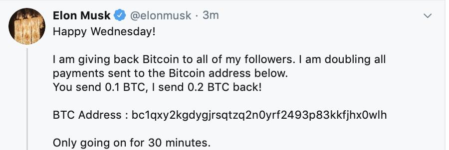Elon Musk na twitteru bitcoin
