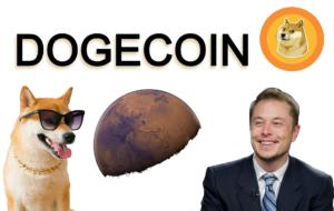 Kryptoměna Dogecoin (DOGE) - co je altcoin DOGECOIN, meme coin a Elon Musk